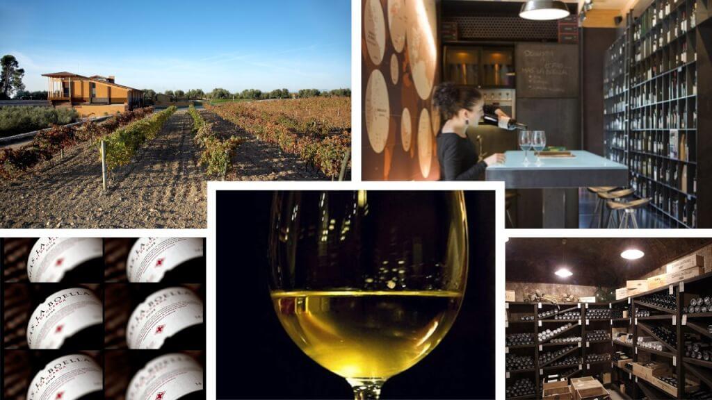 Servir vino Boella